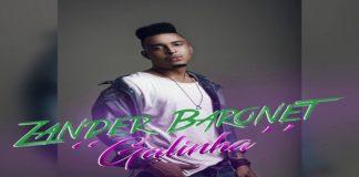 Zander Baronet - Galinha